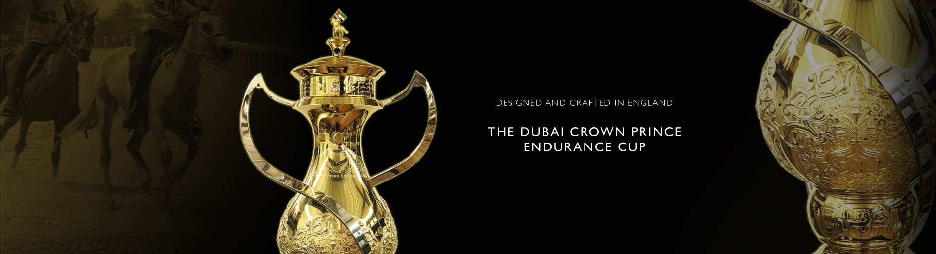 The Dubai Crown Prince Endurance Cup
